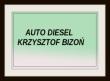 LOGO - AUTO DIESEL Krzysztof Bizoń